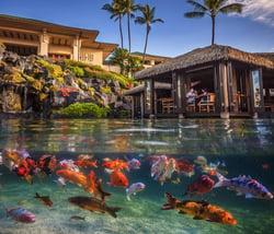 Grand-Hyatt-Kauai-3-1