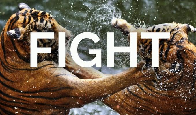 dance-recovery-fight.jpg